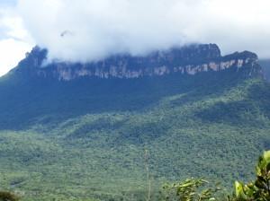Lanschaft rund um den Salto Ángel, Venezuela
