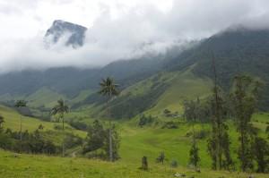 Kolumbien, Valle Cocora