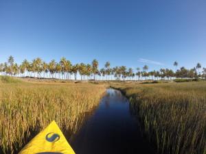 Rio Imbassai Kayak