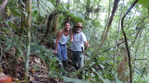 Regenwald Estaleiro Florianopolis