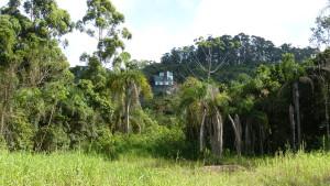 Zwischen Meer und Regenwald - die Pousada Embauba